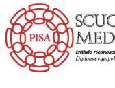 Scuola per Mediatori Linguistici: Summer school